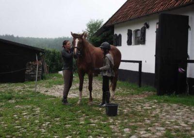 oboz-konie-2011-0007