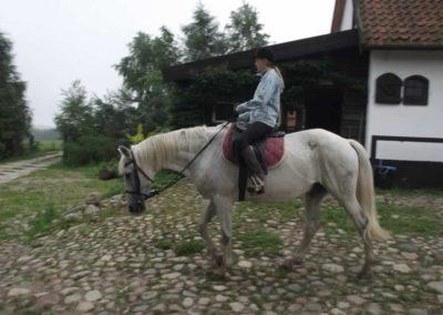 oboz-konie-2011-0008