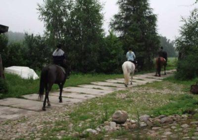 oboz-konie-2011-0010