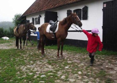 oboz-konie-2011-0011
