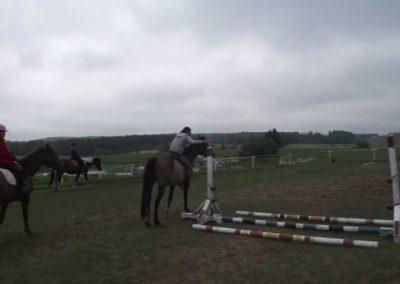 oboz-konie-2011-0019