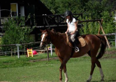 oboz-konie-2011-0023