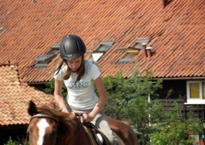 oboz-konie-2011-0024
