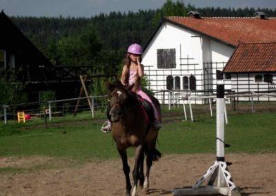 oboz-konie-2011-0025