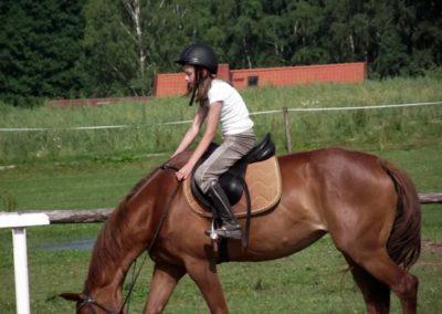 oboz-konie-2011-0027