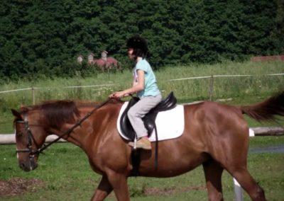 oboz-konie-2011-0028