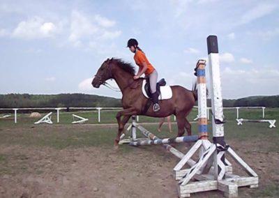 oboz-konie-2011-0029