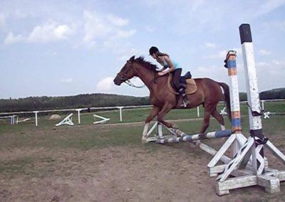 oboz-konie-2011-0030