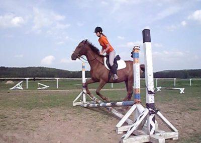 oboz-konie-2011-0031