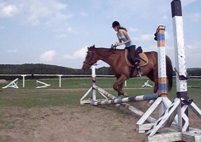 oboz-konie-2011-0032