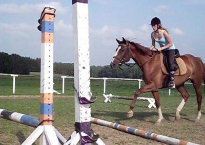 oboz-konie-2011-0034
