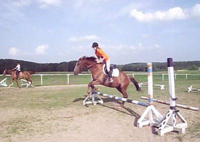 oboz-konie-2011-0035