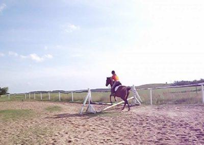 oboz-konie-2011-0036