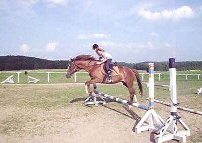 oboz-konie-2011-0037