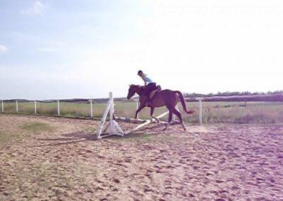 oboz-konie-2011-0038