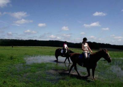 oboz-konie-2011-0041