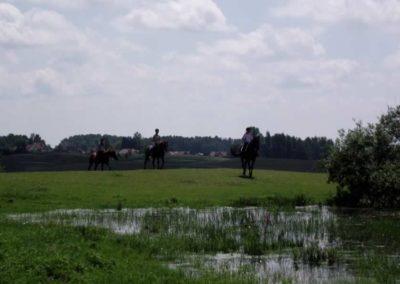 oboz-konie-2011-0042