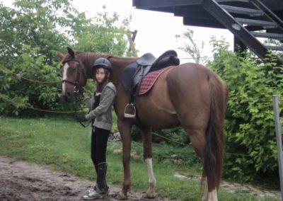 oboz-konie-2011-0043