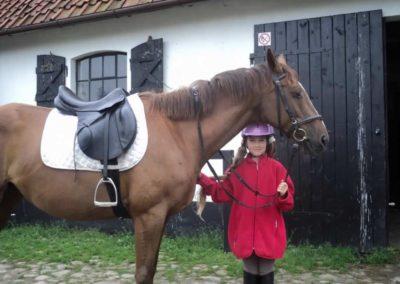 oboz-konie-2011-0044