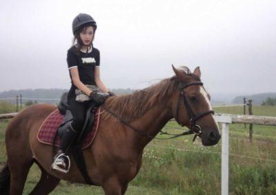oboz-konie-2011-0046