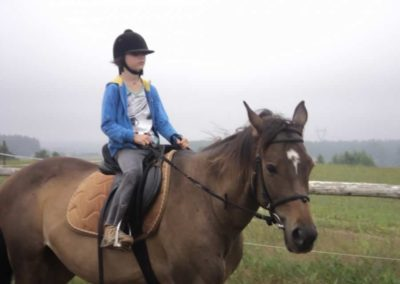 oboz-konie-2011-0047