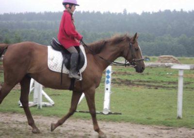oboz-konie-2011-0048