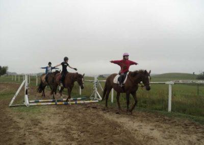 oboz-konie-2011-0052