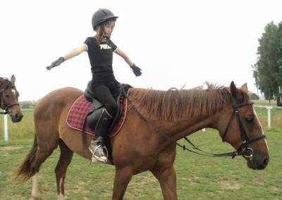 oboz-konie-2011-0053