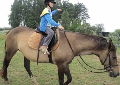 oboz-konie-2011-0054