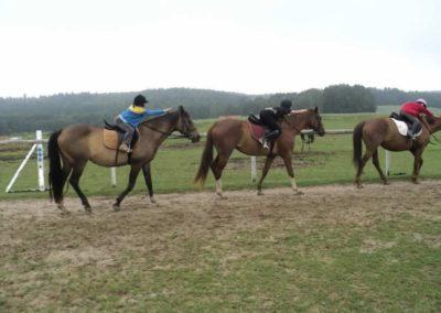 oboz-konie-2011-0055