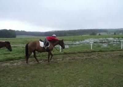 oboz-konie-2011-0056