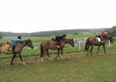 oboz-konie-2011-0057
