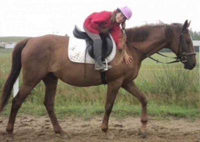 oboz-konie-2011-0059
