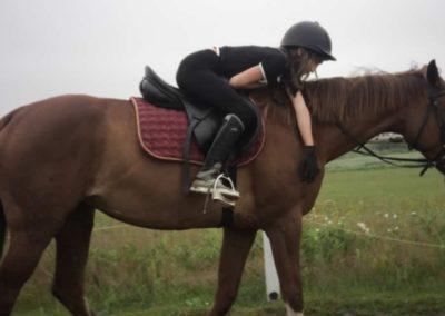 oboz-konie-2011-0060