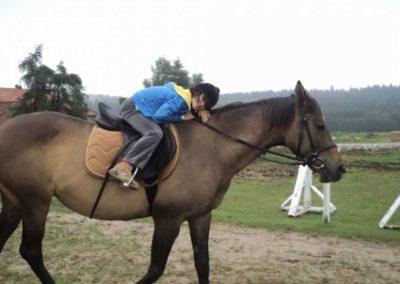 oboz-konie-2011-0061