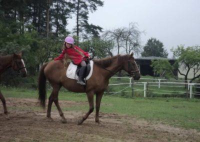 oboz-konie-2011-0062