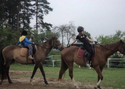 oboz-konie-2011-0063