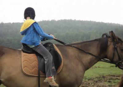 oboz-konie-2011-0066