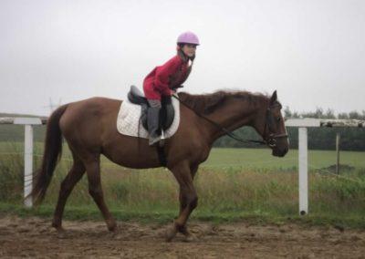 oboz-konie-2011-0067