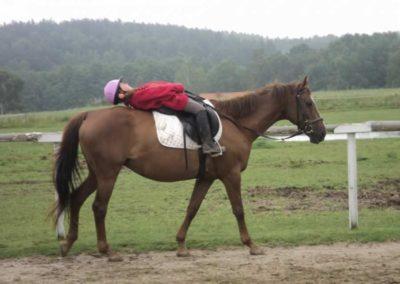 oboz-konie-2011-0070