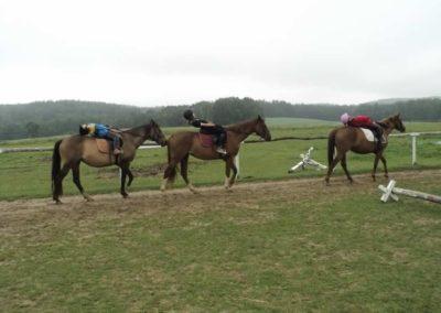 oboz-konie-2011-0071