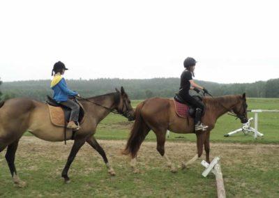 oboz-konie-2011-0073