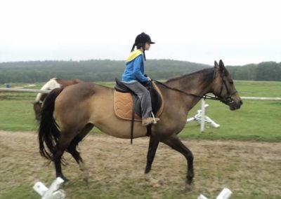 oboz-konie-2011-0074