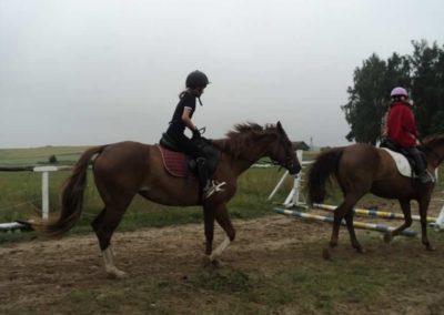 oboz-konie-2011-0075