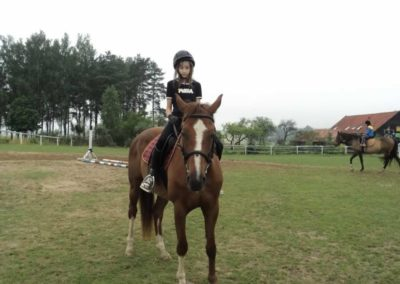 oboz-konie-2011-0076