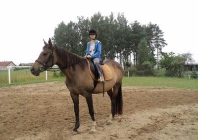 oboz-konie-2011-0077