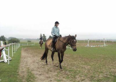 oboz-konie-2011-0078