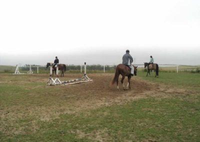 oboz-konie-2011-0079