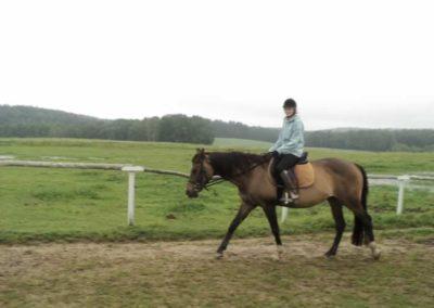 oboz-konie-2011-0080