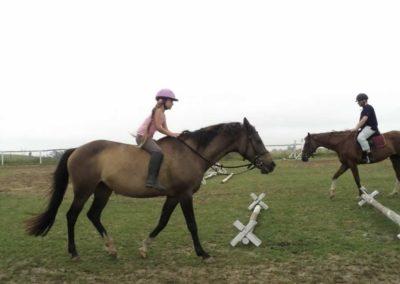 oboz-konie-2011-0088